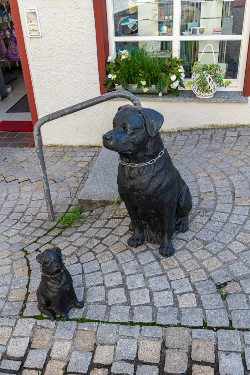 Bodensee_0820